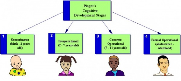 jean piaget and cognitive development The stages of cognitive development piaget's four stages of development occur in infancy, preschool, childhood, and adolescence each stage is characterized by a general cognitive structure that affects all of the child's.